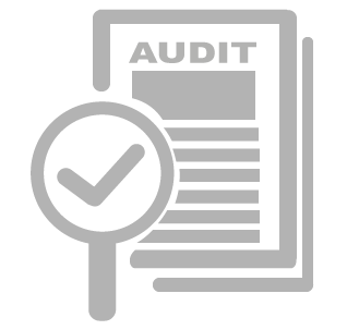 nos-services-audit-icon